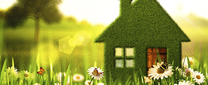 Immobilier eco responsable